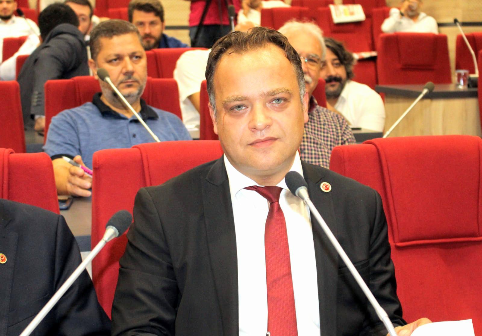 Mhp'li Gökhan Arslan, Avrupa Birliğine